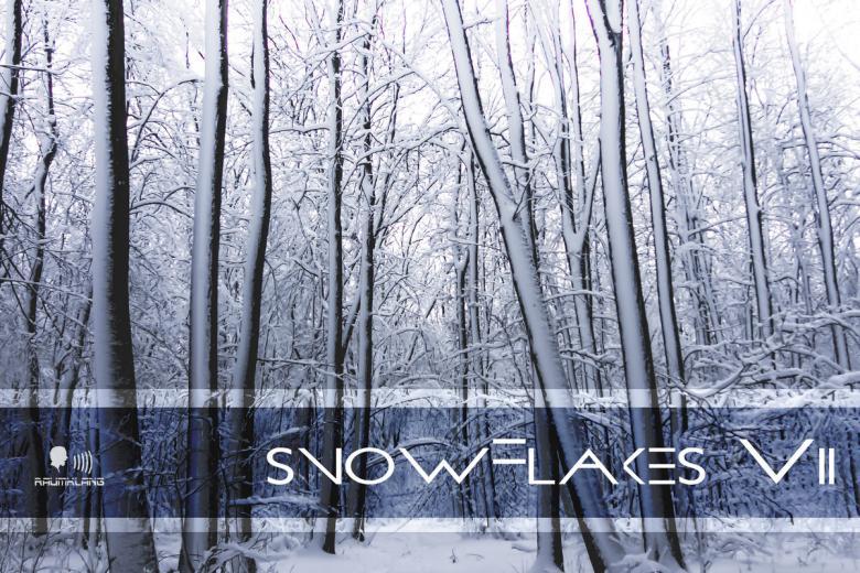 Le label Raumklang Music sort sa compilation indus de Noël