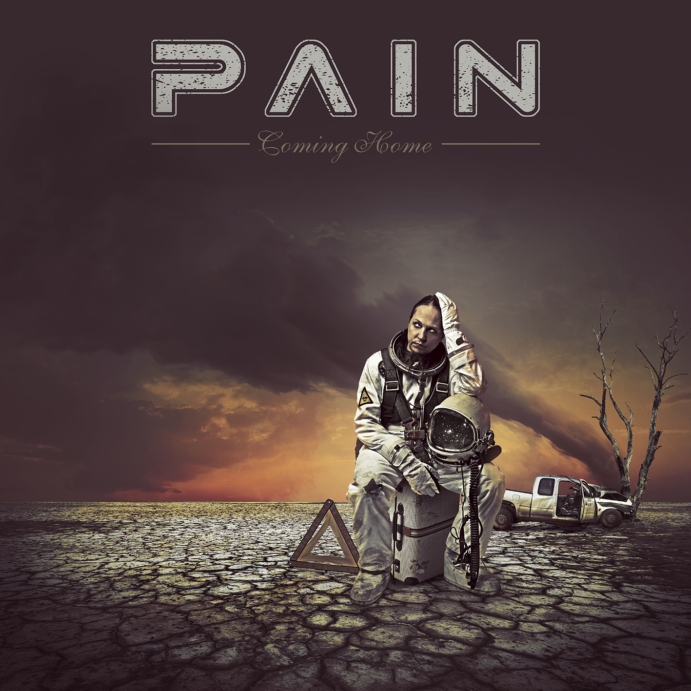 Review : Pain - Coming Home(2017)