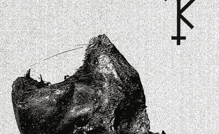 TREPANERINGSRITUALEN et NORDVARGR ont sorti un EP ensemble