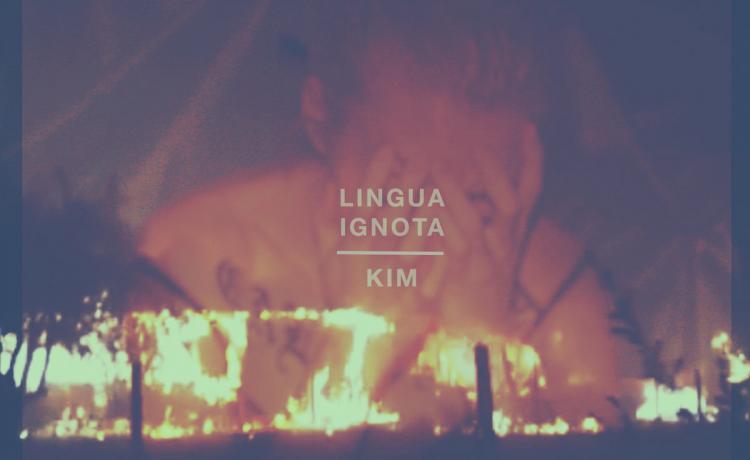 Kim ou EMINEM revu et corrigé par LINGUA IGNOTA