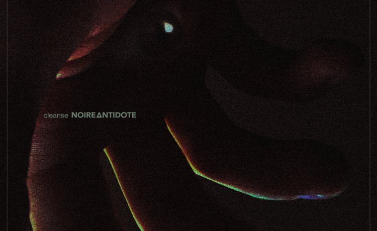 NOIRE ANTIDOTE partage son dernier single