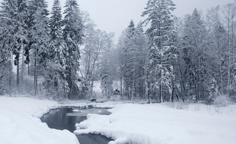 MYRKUR chante l'hiver en avance
